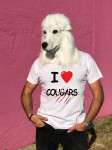T-SHIRT I LOVE COUGARS (HOMME)